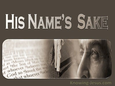 1 John 2:12 His Name's Sake (devotional)09:06 (beige)