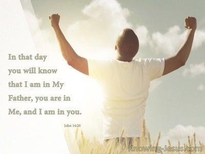 John14:20 In, Of And Thru Christ (devotional)11-12 (white)