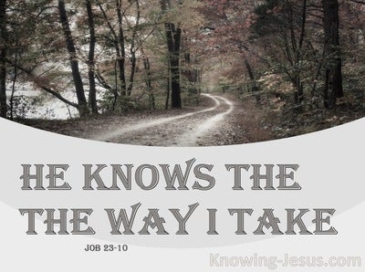 Job 23:10 He Knows The Way I Take (brown)
