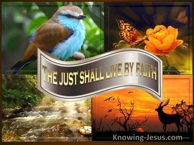 Galatians 3:11 Living By Faith (devotional)12:24   (beige)