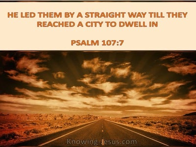 Psalm 107:7 He Led Them By A Straight Way (brown)
