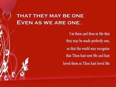 John 17:11 Sanctifying Grace (devotional)05:14 (red)