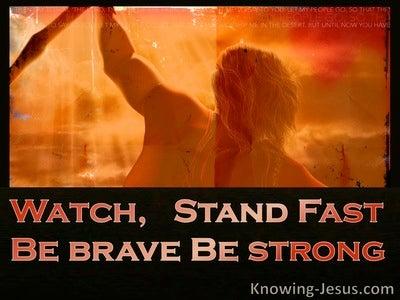 1 Corinthians 16:13 Stand Fast (devotional)08:29 (orange)