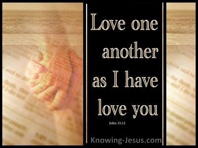 John 15:12 The Arm Of Love (devotional)01:10 (brown)