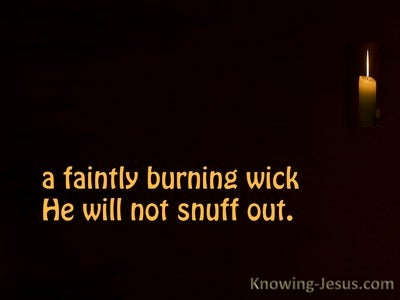 Matthew 12:20 The Bruised Reed (devotional)04:08 (black)