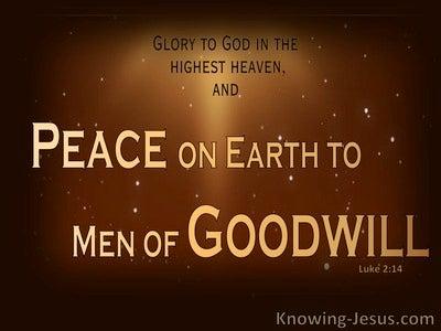 Luke 2:14 The Goodwill of God (devotional)08:21 (brown)