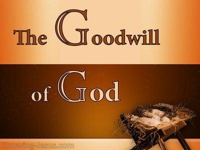 Luke 2:14 The Goodwill of God (devotional)08:21 (orange)