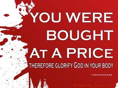 1 Corinthians 6:20 The Price of Sin (devotional)09:05 (white)