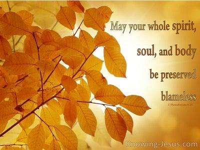 1 Thessalonians 5:23 Trinity Of Man (devotional)05:10 (orange)