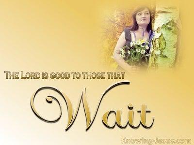 Lamentations 3:25 Upright Devotion (devotional)07:07 (beige)