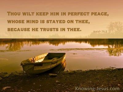 Isaiah 26:3 Why Faith (devotional)06:04 (brown)