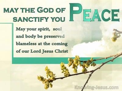 1 Thessalonians 5:23 Wilderness Journey (devotional)05:21 (beige)