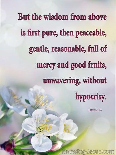 James 3:17 Words of Wisdom (devotional)05:09 (red)