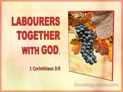 1 Corinthians 3:9 Labourers Together With God (utmost)04:23