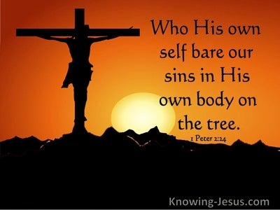 1 Peter 2:24 Who His Own Self Bare Our Sins In His Own Body (utmost)04:06