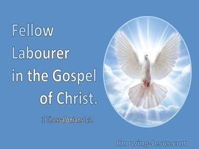 1 Thessalonians 3:2 Fellow Labourer In The Gospel Of Christ (utmost)11:10
