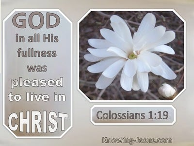 Colossians 1:19 God In All His Fullness Was Pleased To Live In Christ (windows)08:30