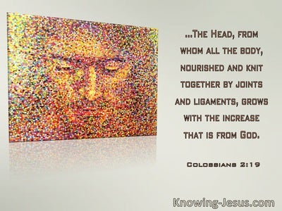 Colossians 2:19 The Head From Whom All The Body Is Nourished And Knit Together (windows)03:16