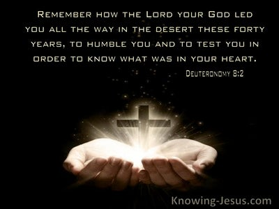 Deuteronomy 8:2 Remember How The Lord Your God Led You ALl The Way In The Desert (windows)09:17