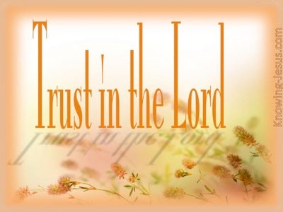 Proverbs 3:5 Faith (devotional)03:13 (orange)