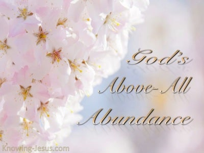 Above All Abundance (devotional)12-04 (pink)