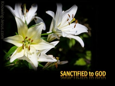 What About Sanctification (devotional)