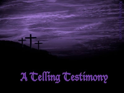 A Telling Testimony (devotional) (purple)