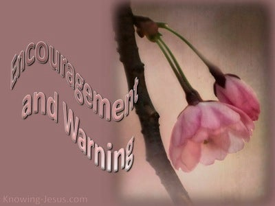 Encouragement And Warning (devotional) (pink)