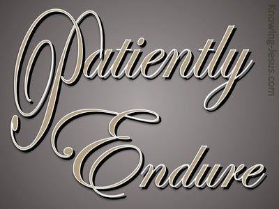 Patiently Endure (devotional) (brown)