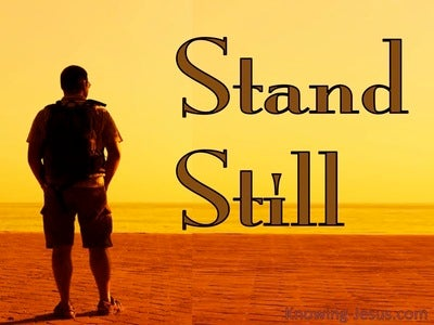Exodus 14:13 Stand Still (devotional)03:13 (orange)