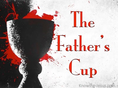 The Father's Cup (devotional)