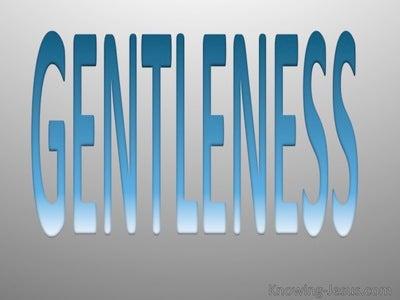 Galatians 5:22 Fruit Of The Spirit Is Gentleness (blue)