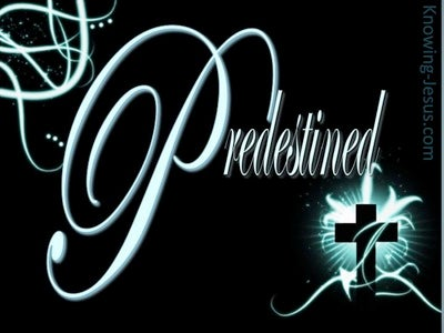 Romans 8:29 Predestined by God (blue)