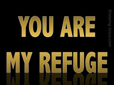 Jeremiah 17:17 You Are My Refuge (gold)