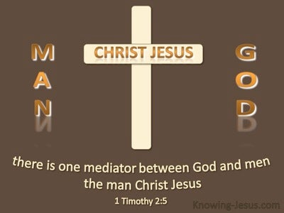 1 Timothy 2:5 One Mediator Between God And Men  (brown)