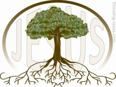 Root and Stem of David (devotional)