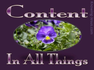 Content In All Things (devotional) (purple)