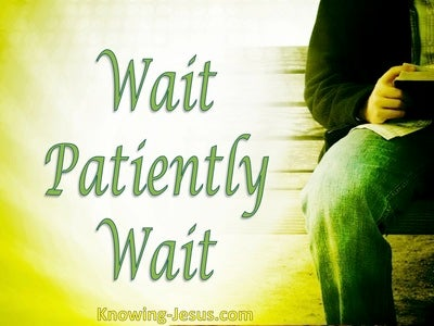 Wait Patiently Wait (devotional)