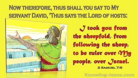 2 Samuel 7:8 The Lord Took You From The Sheepfold To Be My Ruler Over Israel (yellow)