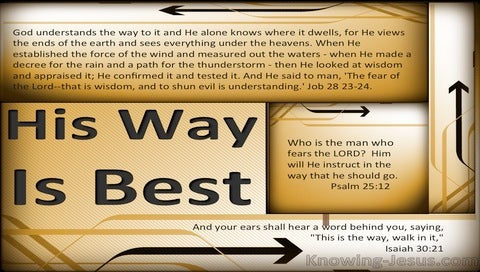 His Way Is Best (devotional) (gold) - Isaiah 30:21