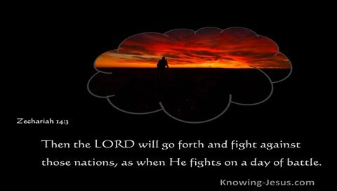 Zechariah 14:3 Then The Lord Will Go Forth And Fight (gray)