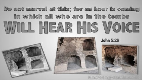 John 5:28 All In The Tombs Will Hear His Voice (gray)