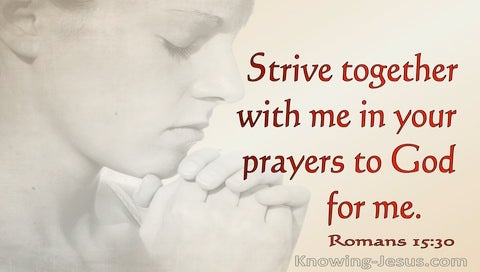 Romans 15:30 Strive With Me In Prayer To God (red)