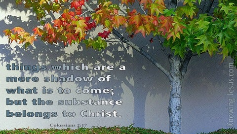 Colossians 2:17 A Shadow Of The Substance To Come (green)