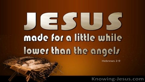 Hebrews 2:9 Jesus Made A Little Lower Than Angels (brown)