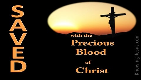 1 Peter 1:19 Saved With the Precious Blood of Christ (black)
