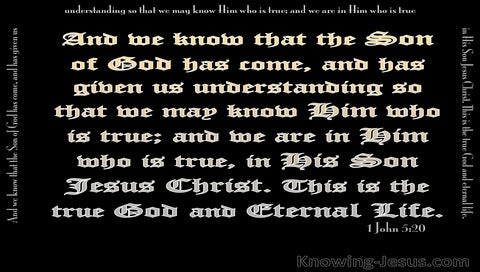 1 John 5:20 This Is The True God (black)