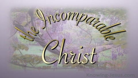 The Incomparable Christ (devotional) (pink)