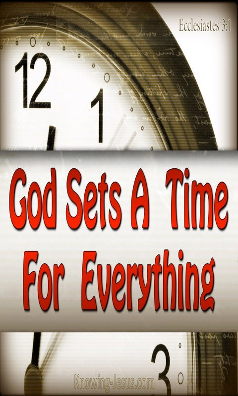 Ecclesiastes 3:1 To Everything There Is A Season (red)