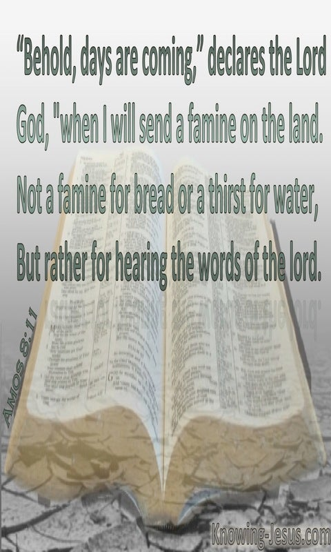 Amos 8:11 God Will Send A Famine In The Land (gray)